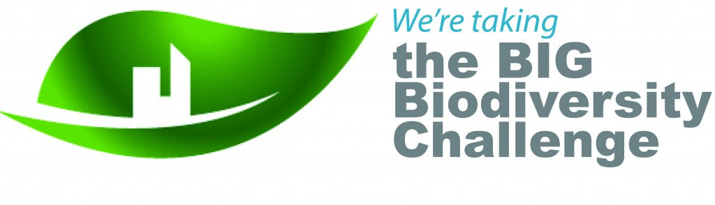 BIG Biodiversity Challenge logo (participant)