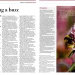 Holyrood Article - Plan Bee Ltd