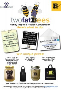 Two Fat Bees Competiton Poster