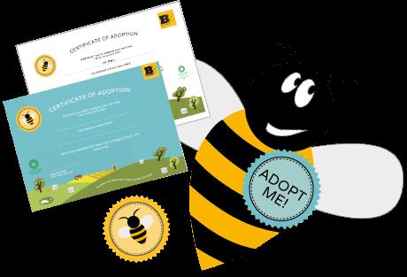 Adopt a Bee Certificate - Plan Bee Ltd