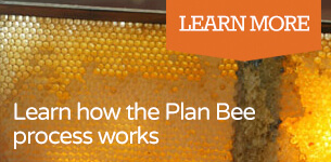 Learn how the Plan Bee process works - Plan Bee Ltd