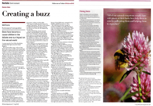 Holyrood Article - Plan Bee Ltd