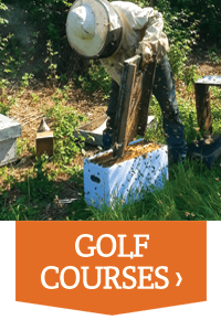 Plan Bee For Business - Golf Courses - Plan Bee Ltd