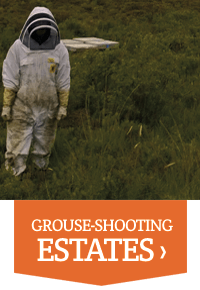 Plan Bee For Business - Grouse Shooting Estates - Plan Bee Ltd