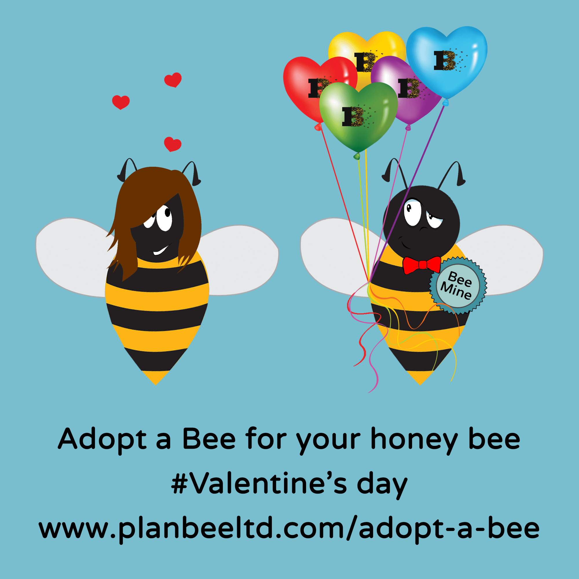 Adopt a Bee for your honey bee #Valentine's day www.planbeeltd.com/adopt-a-bee