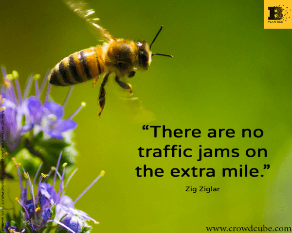Invest in Plan Bee - Traffic Jams - Crowdcube