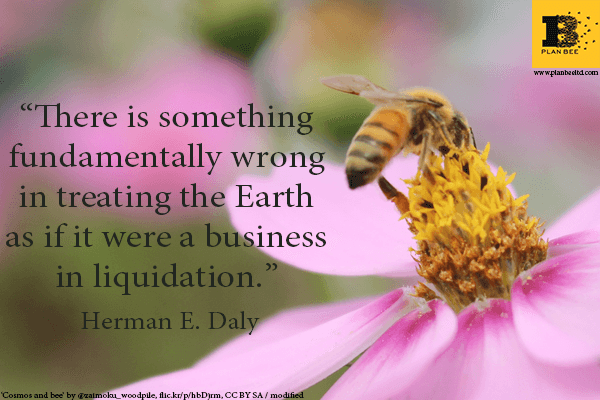 There is something fundamuntally wrong - Plan Bee Ltd