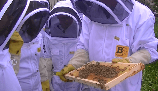 New Scottish Queens at Buchanan and St Ambrose High School - Plan Bee Ltd 3