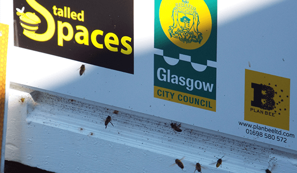 Plan Bee has teamed together with Stalled Spaces - Plan Bee Ltd