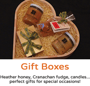 Gift Boxes & Hampers - Plan Bee Ltd