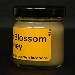 Scottish Blossom Set Honey - 48g 5 - Plan Bee Ltd