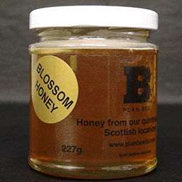 Scottish Blossom Runny Honey - Side 227g - Plan Bee Ltd